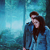 Twilight-twilight-movie-6537559-100-100