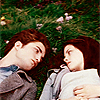 Twilight-twilight-movie-6537569-100-100