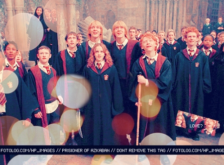 HP-Cast-harry-potter-7421643-500-369